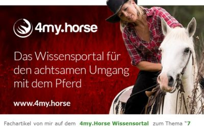 "2018 4my.Horse Fachbeitrag ""7 Dinge gegen Angst im Sattel"""