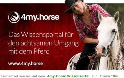 """2018 4my.Horse Fachbeitrag """"Die Macht der Gedanken"""""""